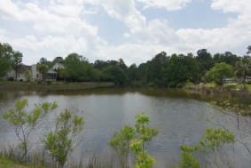 305 Jamesbury Road Homesite