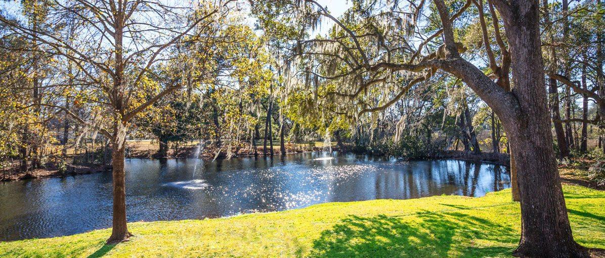 1459 Cecilia Drive lake