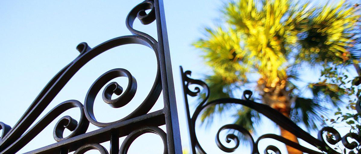 gate and palmetto