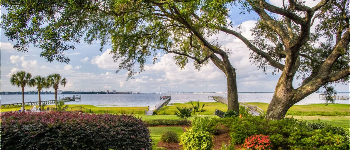 waterfront home oak trees