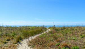 3800 Palm Blvd. dunes