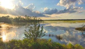 104 Marsh Elder Court, Kiawah Island water view