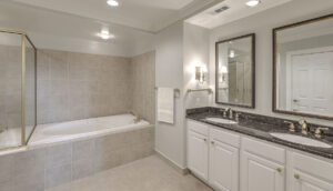 3010 Old Bridgeview Lane, The Bristol master bath