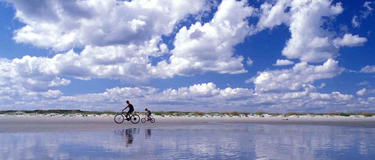 Charleston real estate insights beach scene