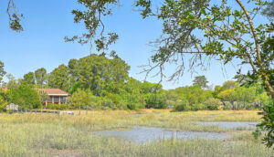 307 Confederate Circle marsh view